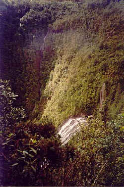 A Waterfall viewed from the billy goat track